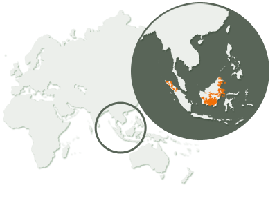 Orangutan Habitation Map