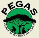pegas_beige1-e1416064822317