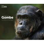 Tales from Gombe by Anup Shah and Fiona Rogers