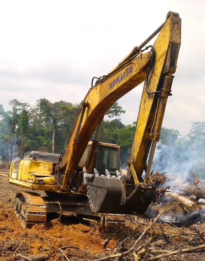 Roads and Deforestation Explode in the Congo Basin